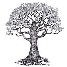 1000+ images... Oak Tree Symbolism Marriage