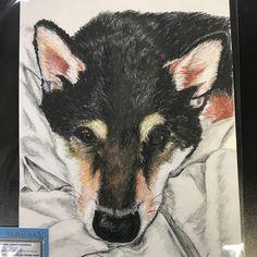 Color pencil portrait by Angela Jossy March 2018