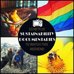 10 must-see sustainability documentaries that are streaming on Netflix. Know of more? Comment below:  1. Chasing Ice 2. Planet Earth 3. Forks Over Knives 4. The Mask you lIve In 5. Chelsea Does 6. Life 7. The Outlist 8. The True Cost 9. Happy 10. More Than Honey  #Sustainable #Sustainability #Documentaries #Netflix #MustSee #Earth #World #Planet #Artic #Glaciers #Environment #Eco #Society #FastFashion #Agriculture #Vegan #Veganism  #Repost @triplepundit  Covering everything from #LQBTQ…