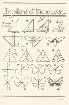 Moths  Butterflies...les animaux 6 by pilllpat (agence eureka), via Flickr