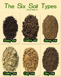Brief discussion of six common soil types (peaty clayish silty sandy chalky and loamy) and how to identify them Compost Soil, Garden Compost, Garden Pests, Worm Composting, Vegetable Gardening, Garden Types, Growing Vegetables, Growing Plants, Soil Improvement