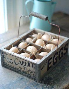 HUEVERA de pl/ástico soporte caja organizadora con tapa para huevos de 10