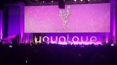 Younique convention, Chicago, 2015