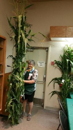 Fantastic entry in the Agriculture Division! Agriculture, Division, Plants, Plant, Planets