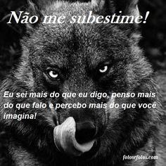 beste ideeën over Frases Lobo Anti Social, Strong Quotes, Sentences, Like4like, Inspirational Quotes, Wisdom, Messages, Thoughts, Humor