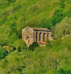 Santo Estevo de Ribas de Miño (Ribeira Sacra)