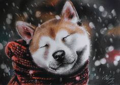 Snowy day and akita in the scarf :3  Soft pastels, A4 size, 240g/m2 This artwork is for sale.  Fb http://fb.com/aleksandrasipart  Blog: http://olasipart.blogspot.com Pinterest: https://pl.pinterest.com/olasipart/ Tumblr: http://olasip.tumblr.com Buy my art (Etsy): https://www.etsy.com/shop/AleksandraSip (or send me PM or e-mail)