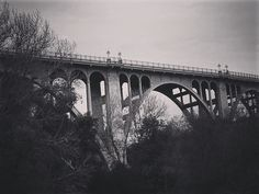 Colorado Street Bridge Pasadena California  Looking up from the Arroyo Seco. Most people drive over this bridge without ever seeing this lovely view from the bottom. Taken during a walk along the river with friends.  #pasadena #california #bridge #architecture #structure #blackandwhite #blackandwhitephotography #bnw_drama #bnw_legit #bnw_captures #gf_bnw #bnwmaster  #LA #losangeles #ig_losangeles #wheream_I_LA #insta_losangeles #cali_grammers #lagrammers #losangelesgrammers #discoverla…