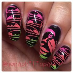 Tropical Collection 4, 5 and 6