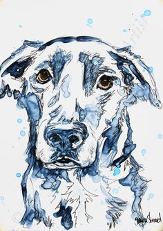 PET SKETCH / PORTRAITS / MIXED MEDIA/ DOGS/ watercolor with pen and ink on YUPO paper by Shaina Kay Stinard - Artist.  www.shainastinardartist.com  Making your photos a work of art!