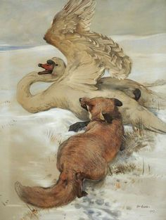 William Walls Fox Attacking Wounded Swan - The Largest Art reproductions Center In Our website. Low Wholesale Prices Great Pricing Quality Hand paintings for saleWilliam Walls Hunting Drawings, Horse Drawings, Animal Drawings, Art Drawings, Drawing Art, Prehistoric Wildlife, Wildlife Art, Swan Painting, Figure Painting