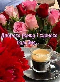 Morning Pictures, Good Morning, Flowers, Bom Dia, Buen Dia, Bonjour, Buongiorno