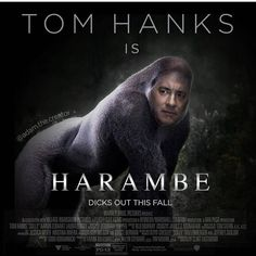 Dicks out Tom  #harambe