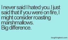 I never said I hated you