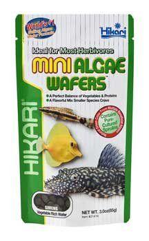 Hikari Mini Algae Wafers - 3 oz  http://www.saltwaterfish.com/product-hikari-mini-algae-wafers-3-oz