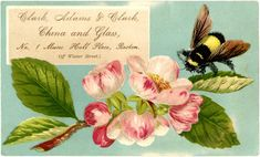 Free Bumble Bee Label - The Graphics Fairy