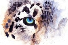 Snow Leopard Painting - Snow Leopard Fine Art Print