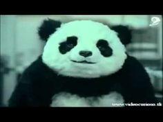 Nunca Diga não ao Panda - Propaganda Engraçada