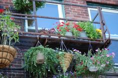 Fire escape gardening inspiration