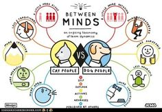 funny pictures - Cat Owners' Minds vs. Dog Owners' Minds