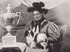 Japanese Chin History | Fabel-Mi Japanese Chin ~ Beauty Without Compromise