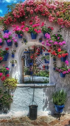 Courtyard in Cordoba, Spain - lots of color