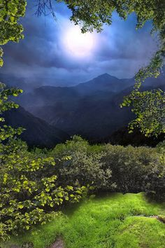 Nature Photography - Google+
