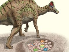 Royal Tyrrell Museum | News | Events | Easter Programs