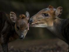 Zo lief! De schoonheid van de natuur als inspiratie.