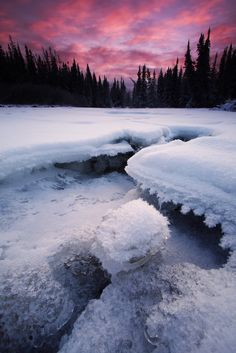 """""""Winters Grasp"""" by Wolfhom on Flickr ~ Winter in Alaska with a beautiful sunrise"""