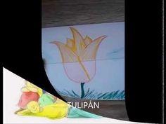 ++++ ++++++++ ++++++++Tulipánból+paprika paprikából+Jancsika Jancsikából+kiskirály kiskirályból+tulipán. ++++