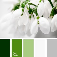 almost white, color of the leaves, color selection for home, colors of spring, dark green, gray, greenery, Pantone color 2017, shades of gray, shades of green, silver, silver color, wedding color solution, White Color Palettes.