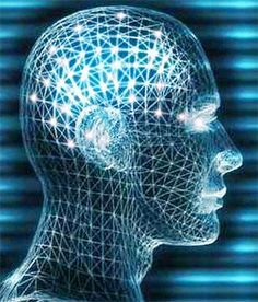 Google Image Result for http://www.neurosciencelaw.com/images/neuropsychology-law.gif
