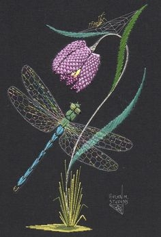 Dragonfly and Fritillary Flower, embroidered by Helen M. Stevens.