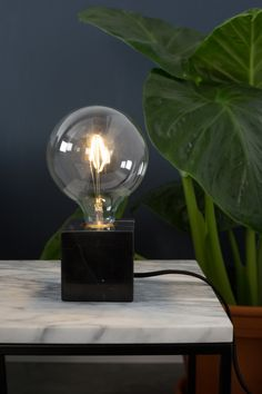 Zuiver Globe LED Leuchtmittel bei www.flinders.de #bulb #light #led #ledlight #deko #dutchdesign