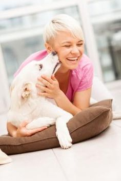 Does your dog lick your face? Learn if dog kisses are safe. Mans Best Friend, Best Friends, Cat Health, Coming Home, Dog Quotes, Rottweiler, Best Part Of Me, Your Dog, Dog Cat