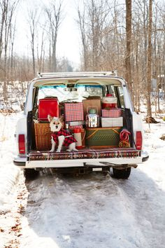 Use an assorted bunch of different patterned luggage bags for a Christmas getaway.