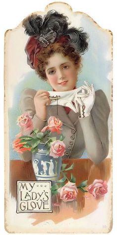 Foster's Hook Gloves Trade Card, J. Edward Bird & Co Baltimore , Maryland 1899 Éphémères Vintage, Images Vintage, Vintage Labels, Vintage Ephemera, Vintage Pictures, Vintage Cards, Vintage Paper, Vintage Postcards, Vintage Prints