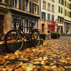 Bienne. Switzerland. Olympus, Switzerland, My Photos, City, Places, Pictures, Beautiful, Instagram, Photos
