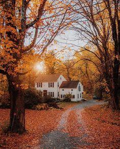 Beautiful Homes, Beautiful Places, Sunday Photos, Autumn Cozy, Autumn Fall, Winter, Autumn Aesthetic, Autumn Photography, Fall Season