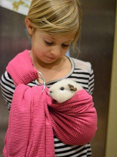 Pink adjustable guinea pig sling small pet carrier bonding pouch - Pink adjustable guinea pig sling small pet carrier bonding pouch Hey, I found this really awesome - Guinea Pig Carrier, Rabbit Carrier, Guinea Pig Costumes, Small Pet Carrier, Pet Guinea Pigs, Pet Pigs, Pet Rabbit, Pet Carriers, Animals And Pets