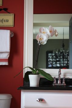 Budget friendly ideas for re doing a bathroom!  this blog is AMAZING!