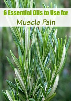 Soothe muscle pain with these 6 essential oils! http://midwestmodernmomma.com/6-essential-oils-use-muscle-pain/