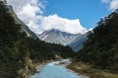 Awesome Yumthang Valley [at an altitude of 3,564 meters above sea level] is worth a visit in northern Sikkim, India