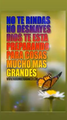 Good Morning Friends Quotes, Good Day Quotes, Love Quotes For Him, Good Morning In Spanish, Good Morning My Love, Christian Videos, Christian Quotes, Simpsons Frases, Spanish Inspirational Quotes