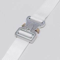 ALYX Rollercoaster Belt - Fucking Young!