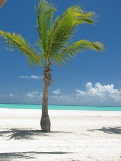 Dominican Republic = Paradise #Beach_Resort ~ http://VIPsAccess.com/luxury-hotels-hawaii.html