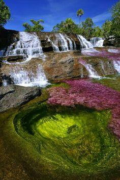 Caño Cristales - Meta, Colombia