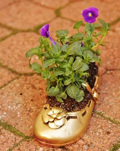 to cute! baby shoe with a plant. Brings back great memories