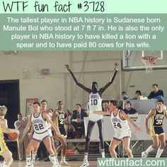 Tallest player in the history of NBA